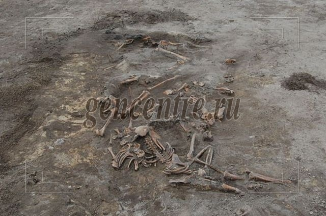 Загадки забытых могил